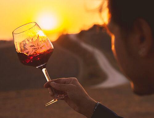 Wine e Fitness, quando l'enologia incontra il benessere psico-fisico